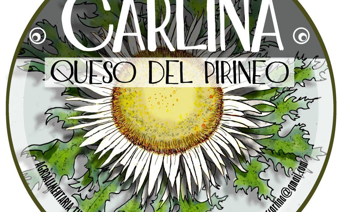 """""""Carlina"""", queso tierno de vaca hecho en el vivero de Adecuara en Biescas"""
