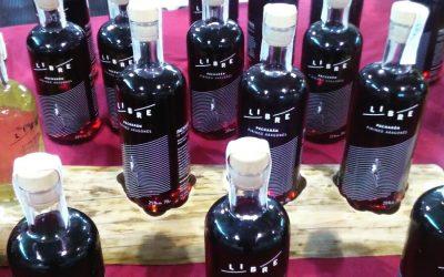 Abejas trashumantes para elaborar licor de miel en el vivero de empresas agroalimentarias de Adecuara en Biescas