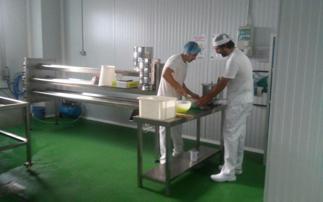 Quesería Bal de Broto inicia su actividad en el vivero de Biescas